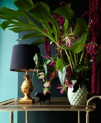 11.2015-Maison-tropical2601